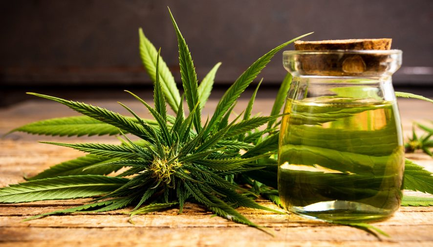 Cbd oils for all the excellent health standards!